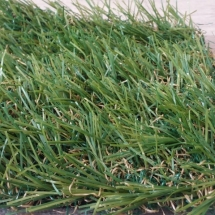artificial grass carpetssd