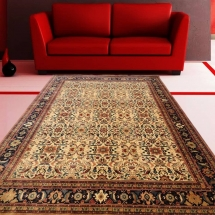 PERSIAN CARPETS And Rugs 21