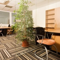 office carpets flooring in dubai