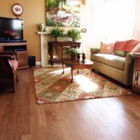 Beautiful Solid Golden Red Oak wool rugs